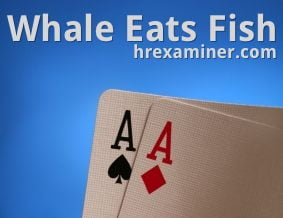 whale-eats-fish-hr-examiner