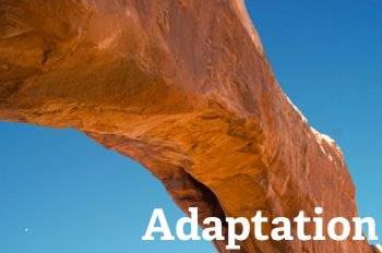 adaptation in the HR workforce