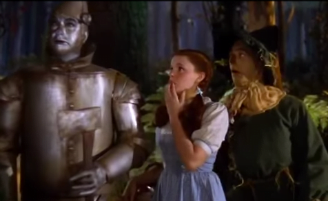 Social Media, Fear & Lawyers image of wizard of oz from youtube video