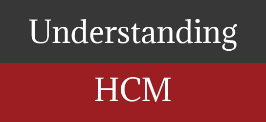 HRExaminer Weekly Feature Image v5.30 August 15, 2014 Understanding HCM
