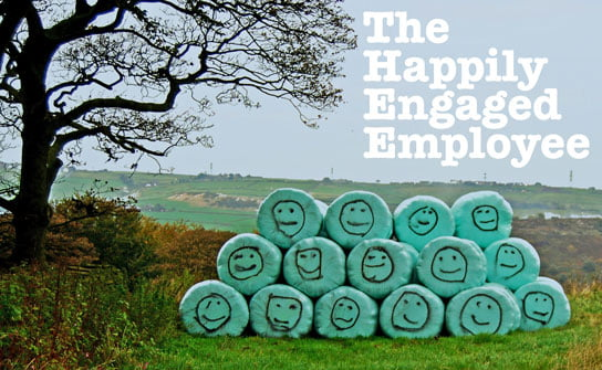 photo of field and tree with text ** The Happily Engaged Employee ** HRExaminer.com v6.05 for February 6, 2015