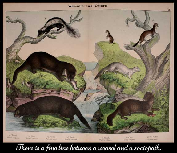 image from book Natural history of the animal kingdom for the use of young people by Kirby, W. F. (William Forsell), 1889, illustration depicting weasels and other animals used on HRExaminer.com article by Heather Bussing April 27, 2015 titled Weasels and Sociopaths