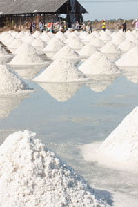 photo of salt field production in HRExaminer article published May 26, 2015 by John Sumser