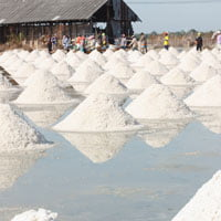 salt field production 200px square crop on HRExaminer.com article by John Sumser published May 26, 2015