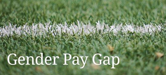 photo of grass sports field boundary line