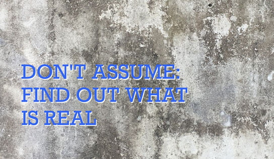 2018-08-16-hrexaminer-dont-assume-find-out-what-is-real-susan-lamotte-photo-img-cc0-via-unsplash-by-becca-lavin-567475-544x316px.jpg