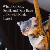 2019-03-18-hrexaminer-photo-img-dots-detail-data-koala-bears-cc0-via-unsplash-by-vita-vilcina-274039-full-crop-sq-200px.jpg