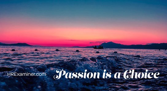 2019-08-05-hrexaminer-photo-img-article-passion-is-a-choice-john-sumser-cc0-via-pexels-photo-731237-by-sheila-544x298px.jpg