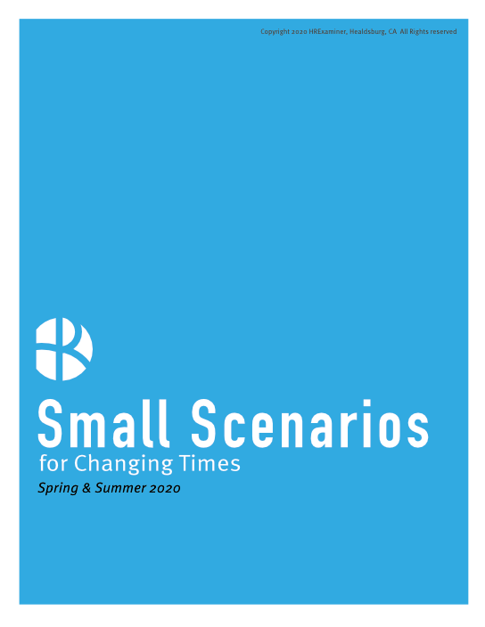 2020-07-20-HR-Examiner-HRX-Small-Scenarios-Generic-544x704px.png