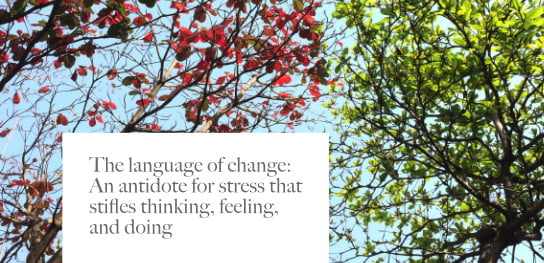 2021-01-21 HR Examiner article Doing Shaw Language of change for stress stock photo img cc0 via pexels le vy 668553 544x264px.jpg