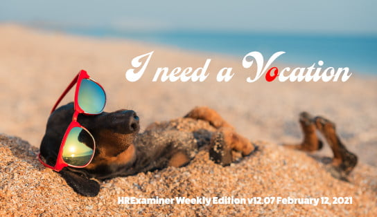 2021-02-12 Picture of cute weiner dog on beach in sunglasses on HR Examiner Weekly Ed v1207 I Need a Vocation stock photo img cc0 by AdobeStock 212943077 ed 544x314px.jpg